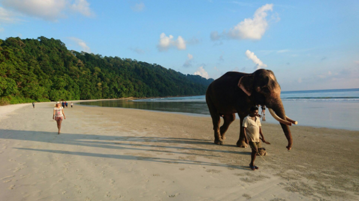 Elephant Beach is the best place to visit in Andeman